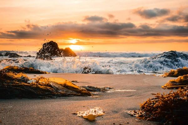 Los Angeles, Laguna Beach, rondreis Amerika - opDroomreis.nu
