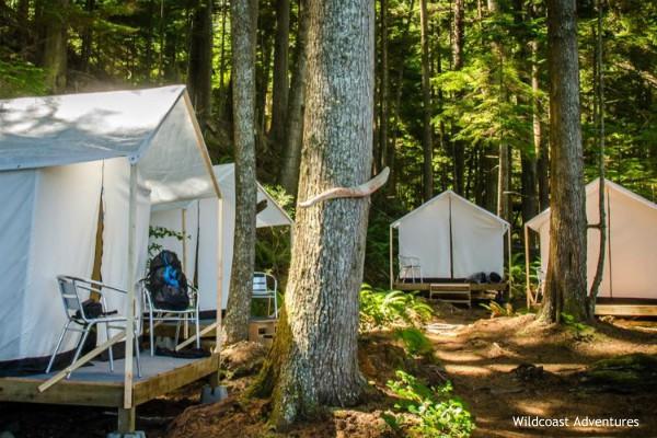 Vancouver Island, Orca Camp, camp setup, rondreis West-Canada - opDroomreis.nu