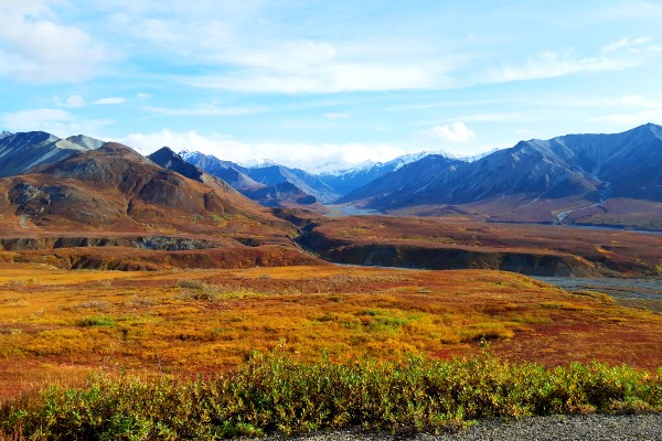 Denali NP, Denali in fall, rondreis Alaska en Yukon - opDroomreis.nu
