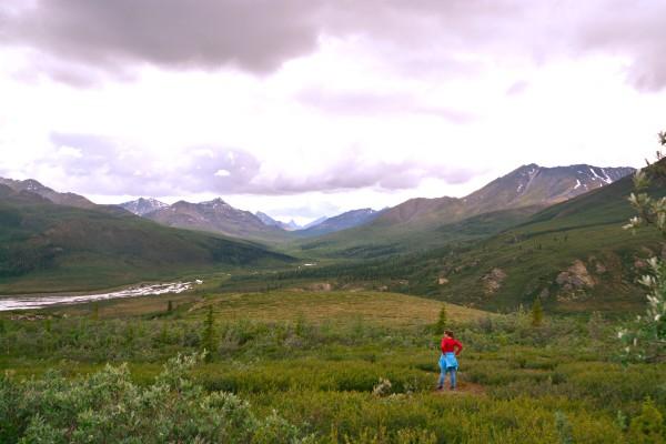 Dawson City, Tombstone PP, rondreis Alaska en Yukon - opDroomreis.nu