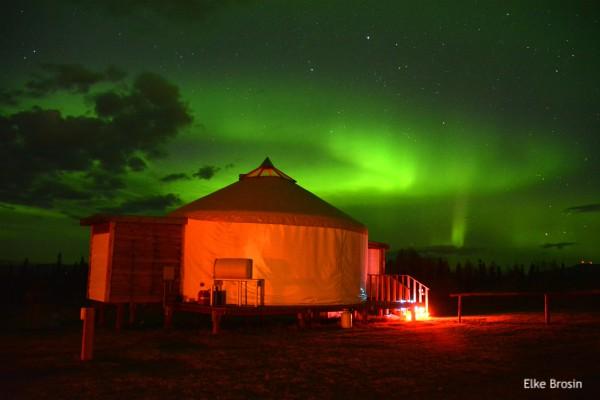 Fairbanks, Noorderlichttour   Reisverhalen Alaska   lees ervaringen van anderen   opDroomreis.nu