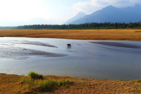 Lake Clark NP, Bearcamp uitkijktoren, rondreis Alaska en Yukon - opDroomreis.nu