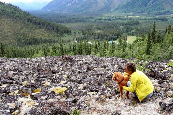 Tok, Log Cabin Wilderness Lodge hiken   Reisverhalen Alaska   lees ervaringen van anderen   opDroomreis.nu