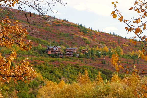 Denali NP, Skyline Lodge in fall, rondreis Alaska en Yukon - opDroomreis.nu