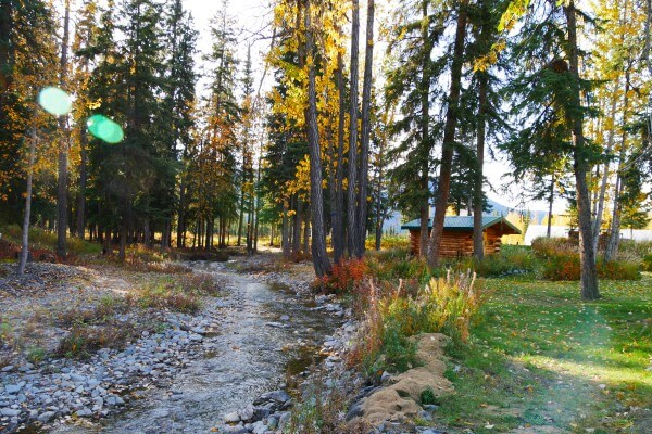 Log cabin wilderness Lodge Tok   Reisverhalen Alaska   lees ervaringen van anderen   opDroomreis.nu