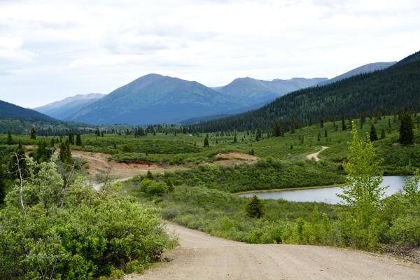 South Canol Road, rondreis Alaska en Yukon - opDroomreis.nu