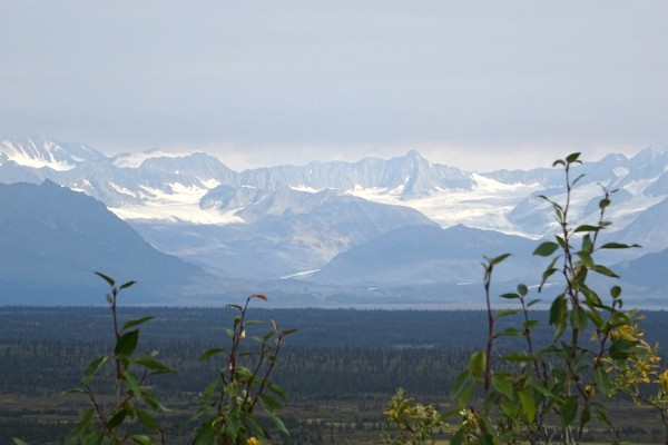 Denali Highway   Reisverhalen Alaska   lees ervaringen van anderen   opDroomreis.nu