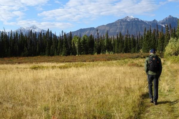 Wandelen in Yukon   Reisverhalen Alaska   lees ervaringen van anderen   opDroomreis.nu