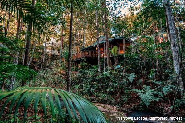 Montville, Narrows Escape Rainforest Retreat, regenwoud - rondreis Australië, opDroomreis.nu