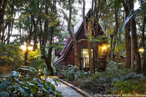 Springbrook NP, The Mouses House Rainforest Retreat - rondreis Australië, opDroomreis.nu