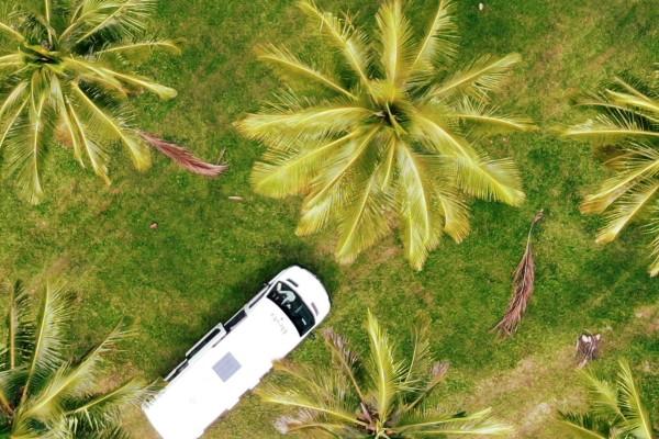 Thala Palm Trees, camperreis - rondreis Australië, opDroomreis.nu