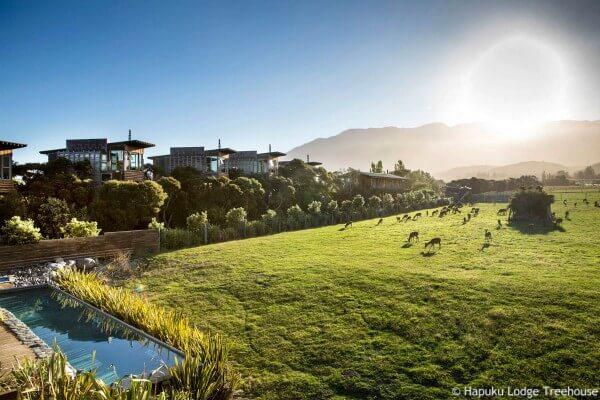 Kaikoura, Hapuku Lodge - rondreis Nieuw-Zeeland, opDroomreis.nu