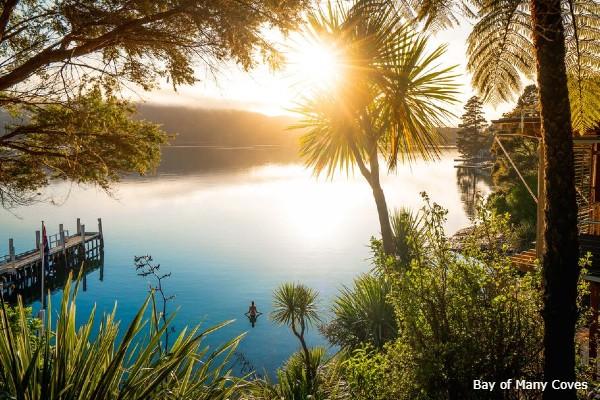Marlborough Sound, Bay of Many Coves, swimming - rondreis Nieuw-Zeeland, opDroomreis.nu