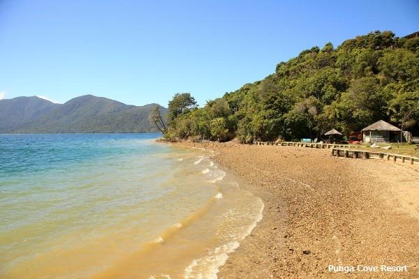 Marlborough Sound, Punga Cove Resort, strand - rondreis Nieuw-Zeeland, opDroomreis.nu