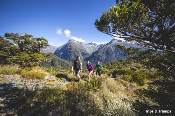 Routeburn Track, Trips and Tramps, rondreis Nieuw-Zeeland - opDroomreis.nu